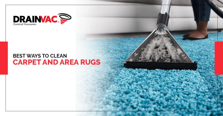 best-ways-clean-carpet-area-rugs